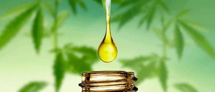 CBD Öl Anwendung Dosierung Einnahme